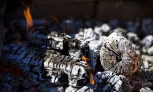 12 Awesome Best Way to Dispose Of Fireplace ashes