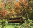 Cabin with Hot Tub and Fireplace Near Me Luxury Dreamin Hollow Great for Stargazing Private Hot Tub