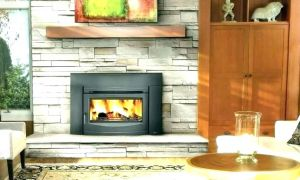 12 New Contemporary Fireplace Insert
