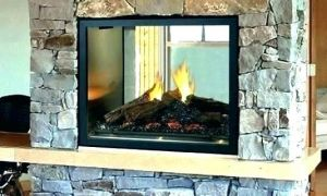 13 Elegant Double Sided Gas Fireplace Insert