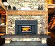 Fireplace Blower Insert Elegant Buck Fireplace Insert – Petgeek