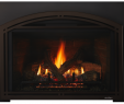 Fireplace Insert Installation Cost Awesome Escape Gas Fireplace Insert