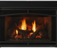 Fireplace Inserts Gas with Blower Elegant Escape Gas Fireplace Insert