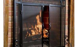 23 Best Of Fireplace Screen Insert