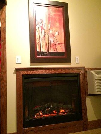 fan in fireplace insert