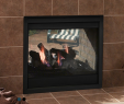 Fireplace Vents On the Side Lovely Majestic Twilight Ii Indoor Outdoor See Thru Gas Fireplace