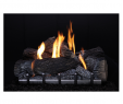 Free Standing Natural Gas Fireplace Lovely Empire Carol Rose Coastal Premium 42 Vent Free Outdoor Gas Firebox Op42fb2mf