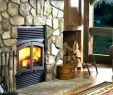 Gas and Wood Fireplace Combo Unique Convert Wood Burning Stove to Gas – Dumat