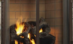 12 Inspirational Gas Fireplace Glass Doors