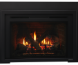 Gas Fireplace Inserts Prices New Escape Gas Fireplace Insert
