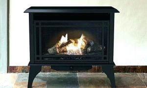 10 Beautiful Gas Fireplace Kits Indoor