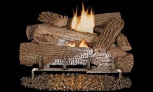 30 Awesome Gas Fireplace Logs with Blower