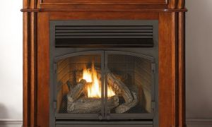 13 Fresh Gas Fireplace Ventless