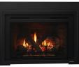 Glass Door Fireplace Insert Luxury Escape Gas Fireplace Insert