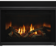 How to Clean Glass On Gas Fireplace Fresh Escape Gas Fireplace Insert