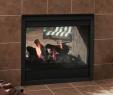 Madison Fireplace Fresh Majestic Twilight Ii Indoor Outdoor See Thru Gas Fireplace