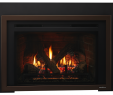 Natural Gas Fireplace Inserts Elegant Escape Gas Fireplace Insert