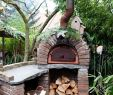Outdoor Fireplace Pizza Oven Combo Awesome Unique Outdoor Fireplace and Pizza Oven Bination Plans