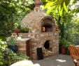 Outdoor Fireplace Pizza Oven Combo Luxury if It Has to Be Brick This One is at Least Interesting