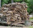 Pallet Wood Fireplace Elegant Fireplace Fuel Int L association Of Certified Home