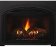 Power Vent Gas Fireplace Elegant Escape Gas Fireplace Insert