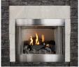 Power Vent Gas Fireplace Lovely Empire Carol Rose Coastal Premium 42 Vent Free Outdoor Gas Firebox Op42fb2mf