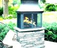 Prefab Outdoor Fireplace Kits Lovely Fireplace Kit Indoor – Boyacarural