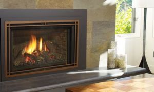10 New Regency Gas Fireplace Insert