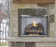 See Through Wood Burning Fireplace Best Of astria