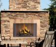 See Through Wood Burning Fireplace Elegant astria