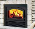 See Through Wood Burning Fireplace Fresh astria