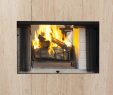 See Through Wood Burning Fireplace Inspirational astria
