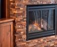 Stone Veneer Fireplace Cost Lovely Stone Veneer