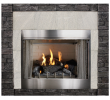 Vent Free Gas Fireplace Insert with Logs Awesome Empire Carol Rose Coastal Premium 42 Vent Free Outdoor Gas Firebox Op42fb2mf