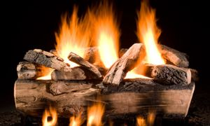 14 Inspirational Vented Fireplace Logs