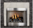Vented Gas Fireplace Insert Awesome Empire Carol Rose Coastal Premium 42 Vent Free Outdoor Gas Firebox Op42fb2mf