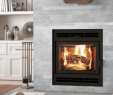 Zero Clearance Fireplace Insert Inspirational Wood Zero Clearance Archives — Vaglio