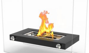 13 Fresh Bio Fuel Fireplace