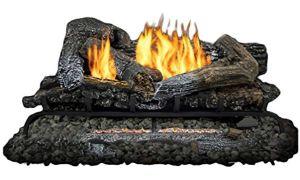 13 New Birch Fireplace Logs