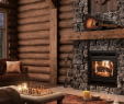 Birch Gas Fireplace Logs Unique Ambiance Fireplaces and Grills