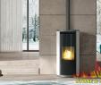 "Corner Freestanding Fireplace Unique 8 2kw ""edilkamin"" Evia Pellet Stove Display Model In Mullingar"
