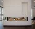 Double Sided Fireplace Inspirational Direct Vent Gas Fireplaces