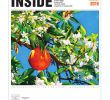 Fireplace and Fixins Best Of Inside East Sacramento March 2016 by Inside Publications issuu