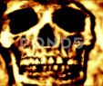 Fireplace Background New Skull Close Up In A Fire Like Background 4k Stock Footage
