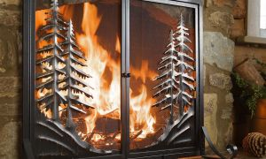 20 Lovely Fireplace Cleanout Door