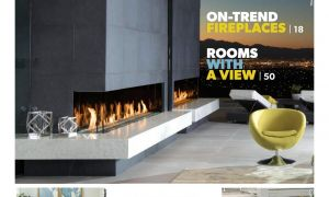20 Unique Fireplace Xtrordinair 864