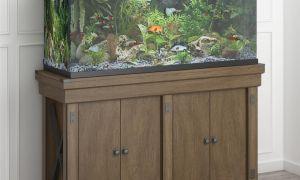 24 Unique Fish Tank Fireplace