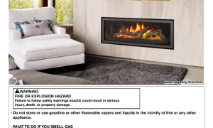 22 Awesome Gas Fireplace with Electric Switch