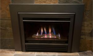 11 Unique Heat and Glo Fireplace Parts