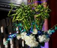 Kohls Electric Fireplace Best Of Kohl Mansion Venue Wedding Wedding theme